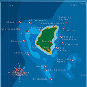 subacuaticas-1